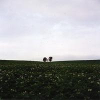 2006summer_0319